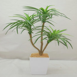 Artificial Plants with PC